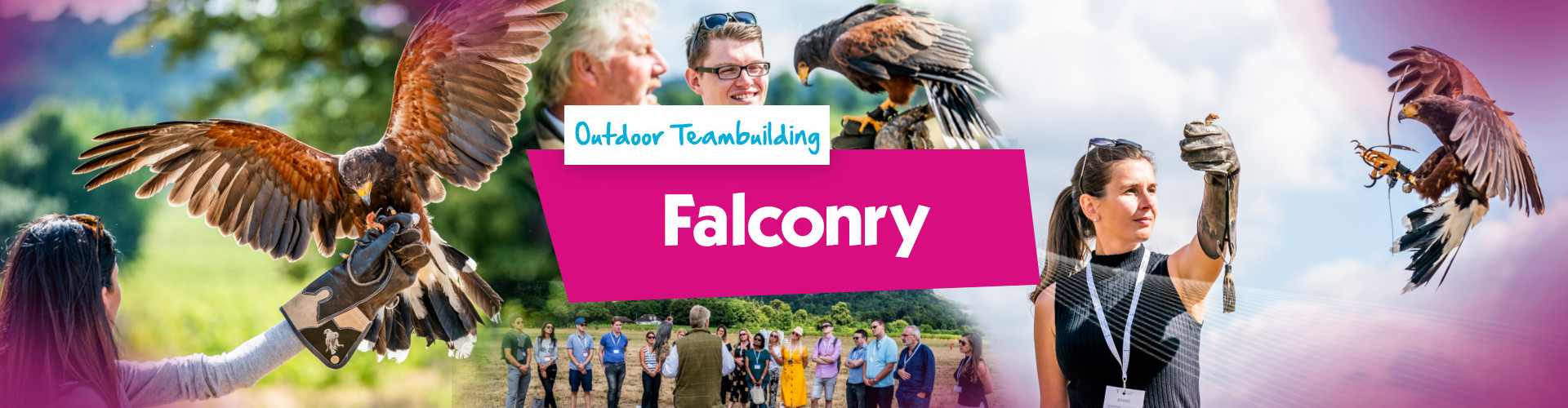 Falconry Banner