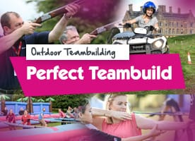 Perfect outdoor team building activity
