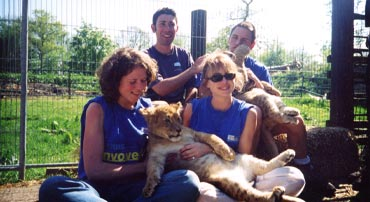 charity challenge lion
